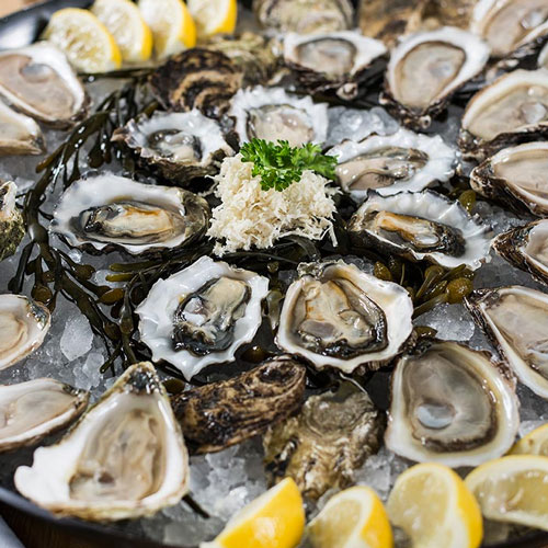 oysters catering west auckland